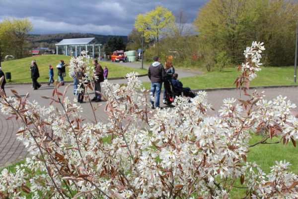 Frühlingsfest; Manderbach; Lebenshilfe